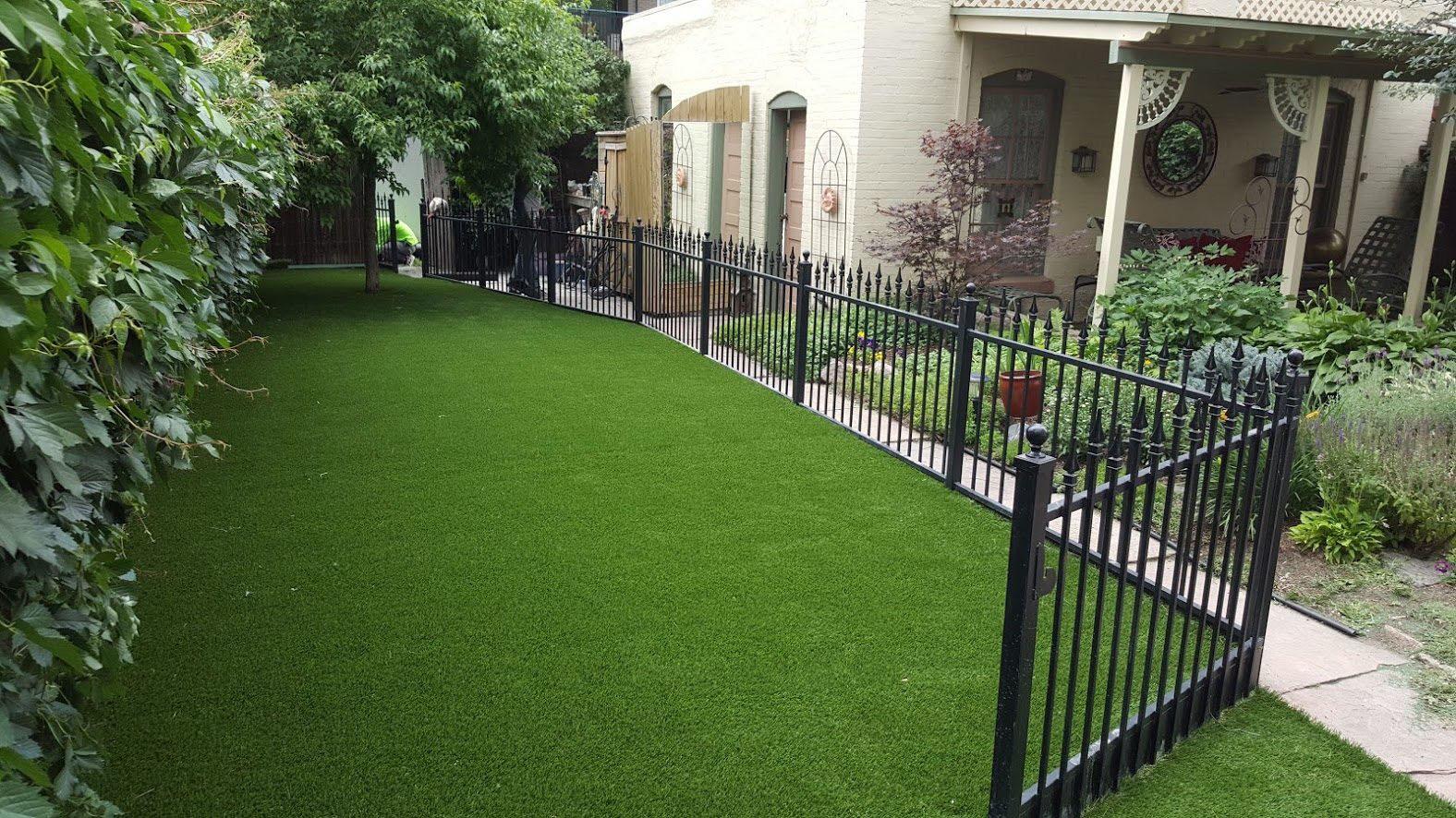 artificial grass side yard