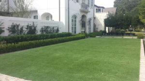 front lawn in synthetic grass turf